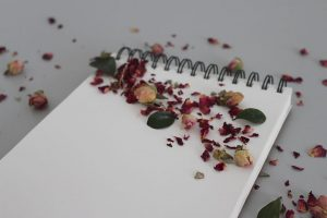 blank paper with rose petals